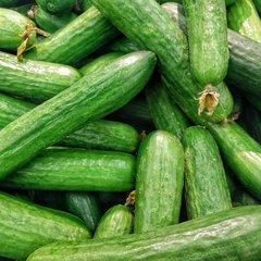 Komkommer zaden