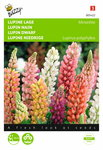 Lupinus Russel's Minarette (gemengd) zaden