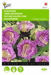 Klokwinde Violetblauw Cobaea zaden - voorkant