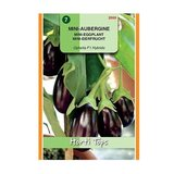 Horti Tops Aubergine mini Ophelia F1 Solanum melongena zaden