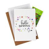 Bloemenzaden met kaart 'hello spring' verpakt in pergamijn zakje_