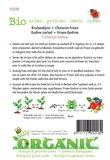 Biologische Krulandijvie Pancalière zaden