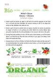 Biologische Witlof Middelvroeg zaden - achterkant