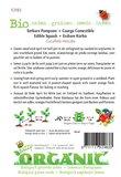 Biologische Winter Squash Waltham Butternut zaden - achterkant