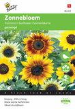 Zonnebloem Miniatuur Cucumerifolius (gemengd) zaden