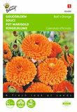 Dubbelbloemige Ball's Oranje (Goudsbloem) zaden