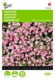 Roze Zeepkruid zaden