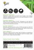 Komkommers Fidelio F1 Meeldauwresistent zaden- achterkant