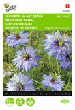Juffertje-in-het-groen Miss Jekyll blauw (Nigella) - voorkant