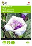Trompetplant Datura zaden - voorkant