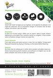 Majoraan hortensis zaden - achterkant
