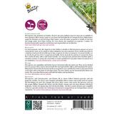 Microgreens Borage komkommerkruid kiemzaden - achterkant