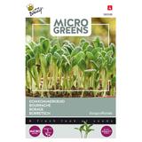 Microgreens Borage komkommerkruid kiem zaden - voorkant