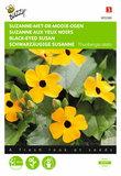 Suzanne-met-de-mooie-ogen Thunbergia zaden - voorkant