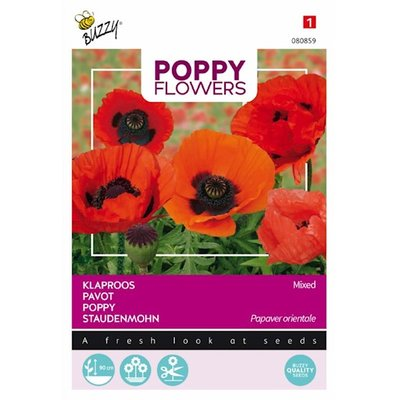 Oosterse klaproos Papaver Poppy Flowers (gemengd) zaden