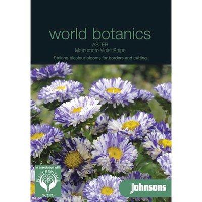 Botanics Aster Matsumoto Violet Stripe paars wit zaden