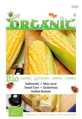 Biologische Mais Golden Bantam (Suikermais)