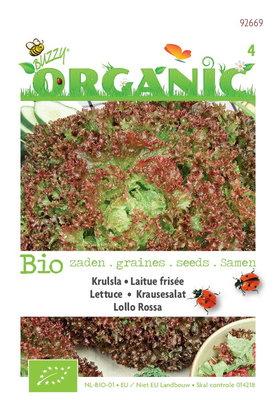 Biologische krulsla Lollo rossa