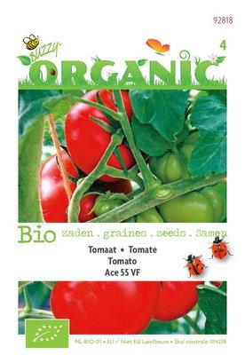 Biologische Tomaten Ace 55VF