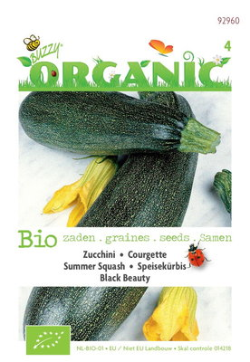 Biologische Courgette Black Beauty