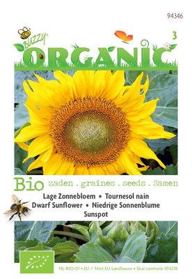 Biologische Zonnebloem type Sunspot