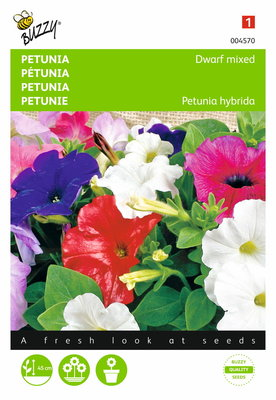 Petunia hybrida compacta (gemengd)