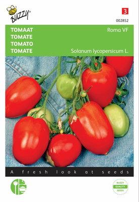 Tomaten Roma Vf