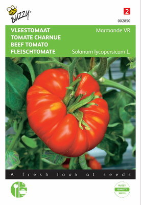 Tomaten Marmande (Vleestomaat)