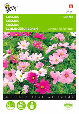 Cosmos Sonata (gemengd)
