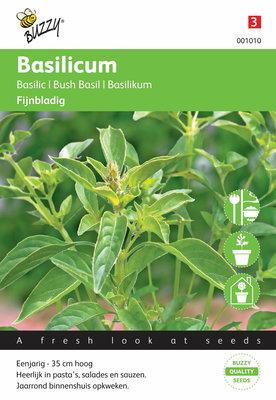 Basilicum Fijne