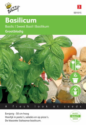 Grove Basilicum (grootbladig)
