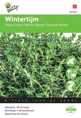 Tijm (Wintertijm)