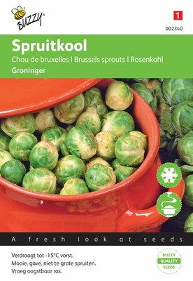 Spruitkool Groninger (spruitjes)