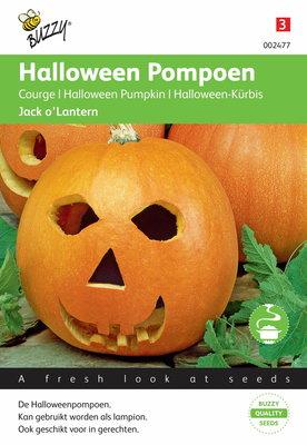Pompoenen Jack O'Lantern (halloween pompoen)