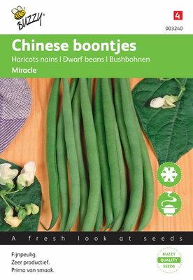 Buschbohnen Chinese Boontjes Miracle (Stamslabonen)