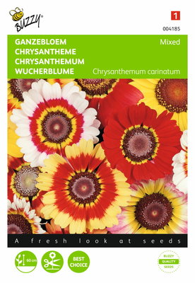 Ganzebloem gemengd (Chrysanthemum)