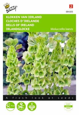 Klokken van Ierland (Molucella)
