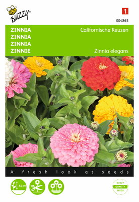 Zinnia Californische Reuzen gemengd