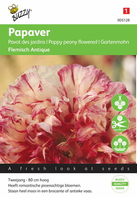 Papaver Slaapbol Flemish Antique zaden