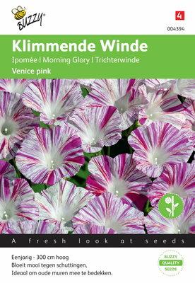 Klimmende winde Venice Pink Ipomoea