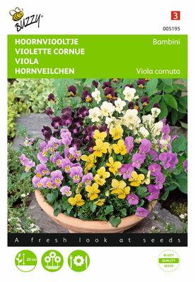 Hoornviooltje Bambini gemengd Viola zaden