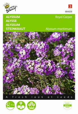Alyssum Royal Carpet zaden