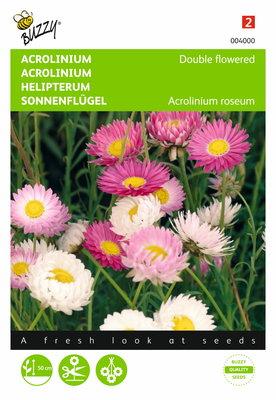 Acrolinium dubbelbloemig gemengd zaden
