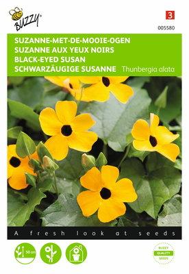 Suzanne-met-de-mooie-ogen Thunbergia zaden
