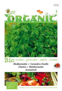 Biologische Koriander zaden