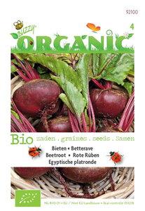 Biologische Bieten Egyptische zaden