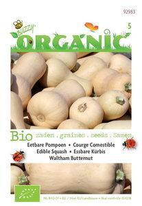 Biologische Winter Squash Waltham Butternut zaden