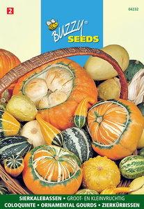 Sierkalebassen zaden