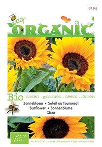 Bloemzaden zonnebloemen