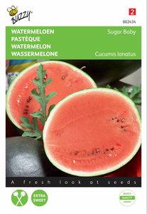 Watermeloen Sugar Baby zaden